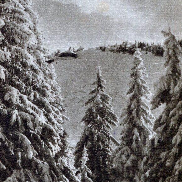 Vederi cu peisaje de iarnă