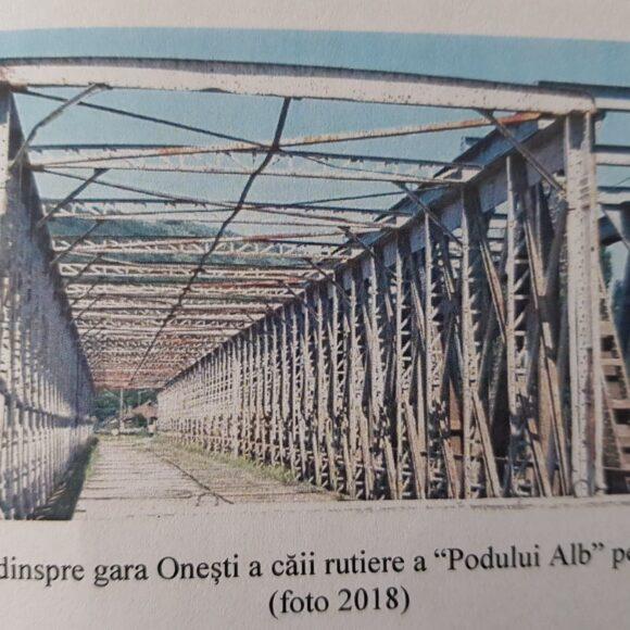 Știați că la Onești, în 1881, a fost construit primul pod combinat din România?