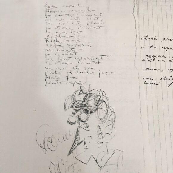 Vânătoarea de comori: Manuscrisele păstrate în bibliotecă