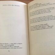 """Poezie pentru suflet: """"[Cântă, cântă mai departe]"""