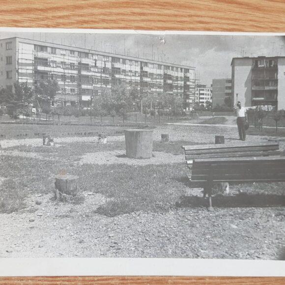 Știți ce parc din Onești se numea Parcul Trandafirilor?