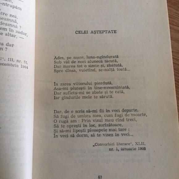 """Poezie pentru suflet: """"Celei așteptate"""" de Panait Cerna"""