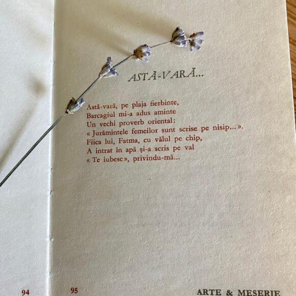 """Poezie pentru suflet: """"Astă-vară…"""" de Romulus Vulpescu"""